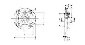 ucfc1-300x161